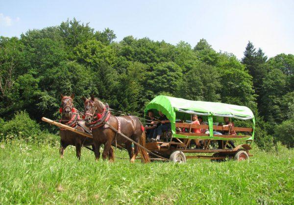 38ss - Nasz wóz taborowy.